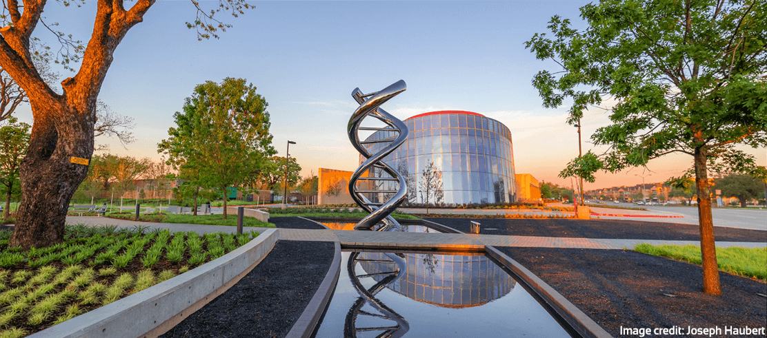 The DNA Sculpture in Discovery Park with the Discovery Center in the background